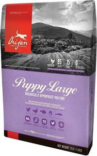 Orijen Large Puppy Dog Food